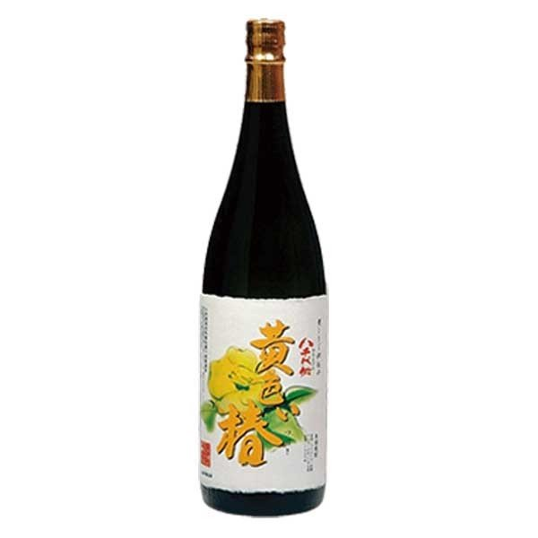 黄色い椿 (春限定) 1800ml 1.8L